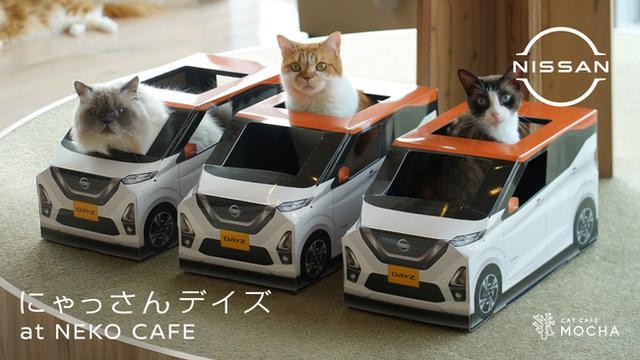 画像1: ねこ用日産軽自動車「にゃっさんデイズ」×猫カフェ「MOCHA」がコラボ