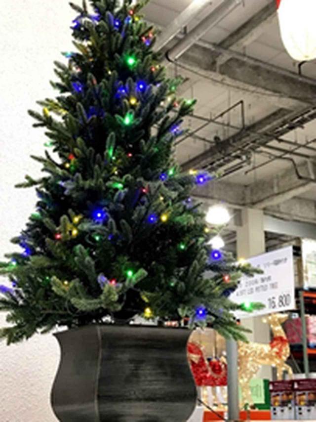 画像6: 【クリスマスシーズン必見】コストコに行くときこそ、カーシェアがおすすめ!?