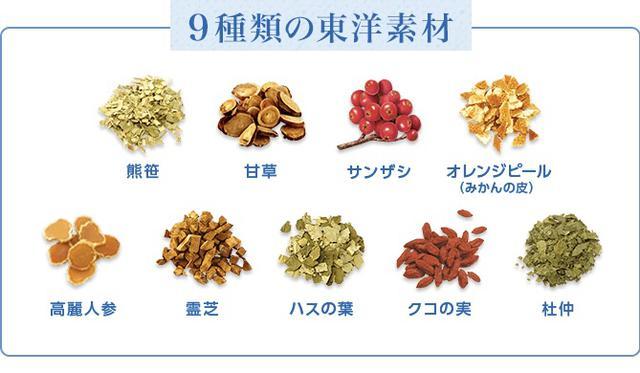 画像2: 【試飲レポ】肌の潤いを守るヒアルロン酸を機能性関与成分として配合した「からだ巡茶 モイスティア」発売!