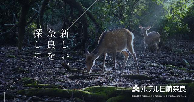 画像: ホテル日航奈良【公式】 JR奈良駅西口直結。世界遺産徒歩圏内。