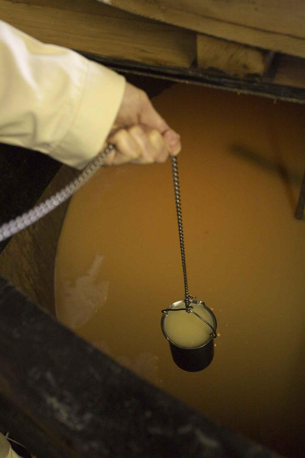 画像2: 【体験レポ】シングルモルトウイスキー「山崎」のリモート工場見学に行ってみた♡