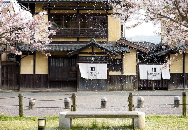 画像2: 【春の桜旅へ出かけよう!】シェフ特製お花見セットとともに、日本の春を満喫する旅をお届け!