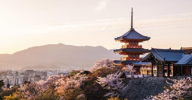 画像: 《News》この春は、お花見セットを携えて。 ゆったり愉しむ、VMG HOTELSの『桜旅』いよいよスタート|VMG HOTELS|note
