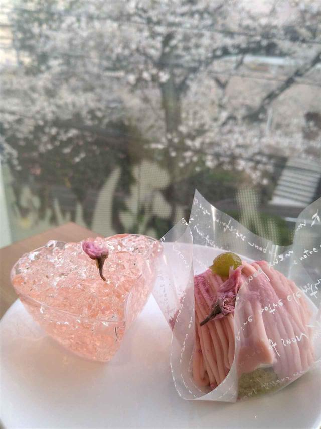 画像: スイーツカフェGOLGO 「お花見さくらスイーツset」SAKURA set ¥980(税込)