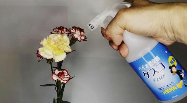画像2: [実験] 本当に花の香りはそのままに、悪臭だけ消せるのか!?