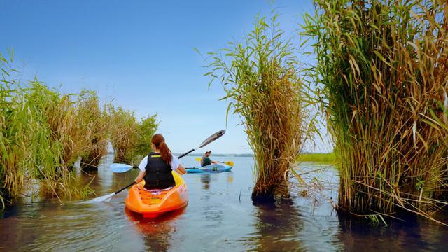 画像3: 【琵琶湖マリオットホテル】宿泊プラン「サイクリング&カヤックで琵琶湖の自然を探求」