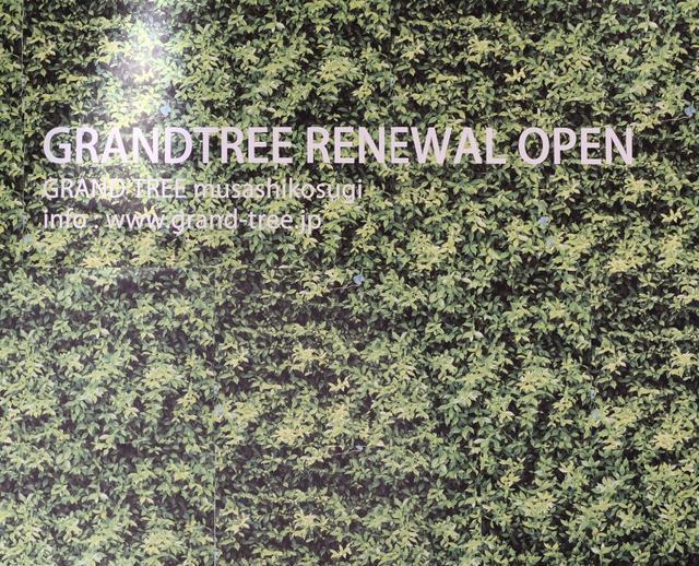 画像2: 【レポ】「グランツリー武蔵小杉」が開業以来の大規模リニューアルを開始!リニューアル第1弾は22店舗オープン⭐︎
