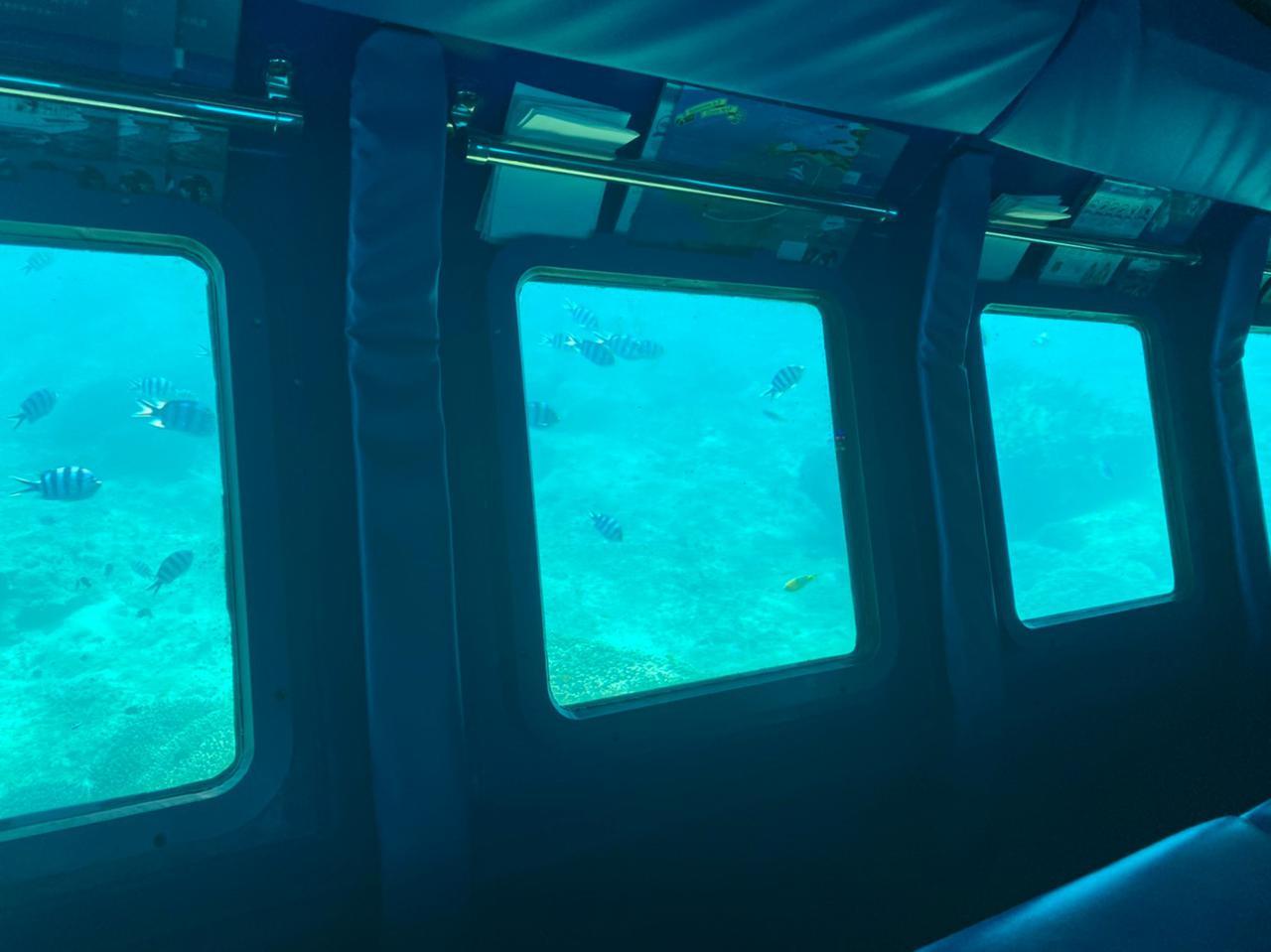 画像: 沖縄本島に行くなら絶対に乗ったほうがいい!サブマリンJr.Ⅱ