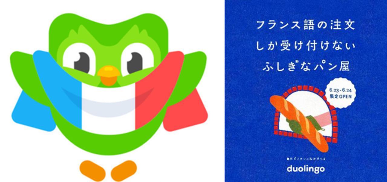 画像1: 語学アプリ「Duolingo」が日本語話者向けフランス語コースをローンチ