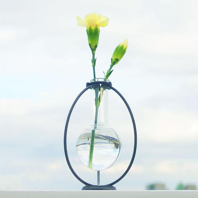 画像: 宙に浮く水球 一輪挿し - tk185  - 花瓶・植木鉢 | Pinkoi