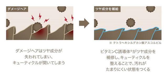 画像3: 髪に付着する汚れを防ぎ、洗い流しやすい状態を保つヘアケア「ShinkoQ」