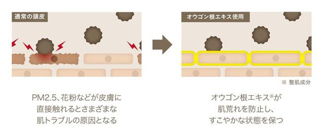 画像4: 髪に付着する汚れを防ぎ、洗い流しやすい状態を保つヘアケア「ShinkoQ」