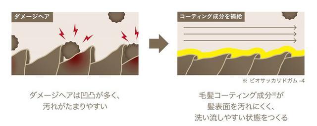 画像2: 髪に付着する汚れを防ぎ、洗い流しやすい状態を保つヘアケア「ShinkoQ」