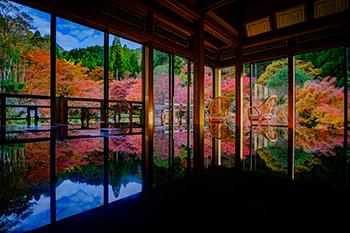 画像2: <庭園リフレクション絶景>