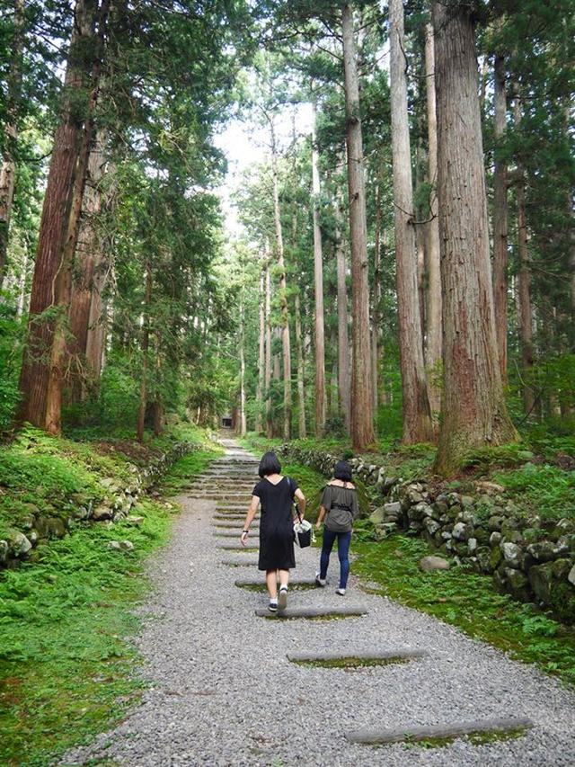画像: お散歩@平泉寺白山神社