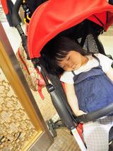 画像: 寝ている間に・・・☆