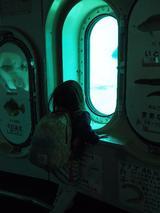 画像: 海底7mを散歩しよう!玄海海中展望塔☆