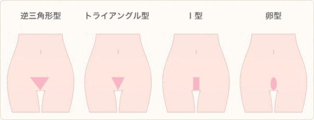 画像: www.hygienina.cc