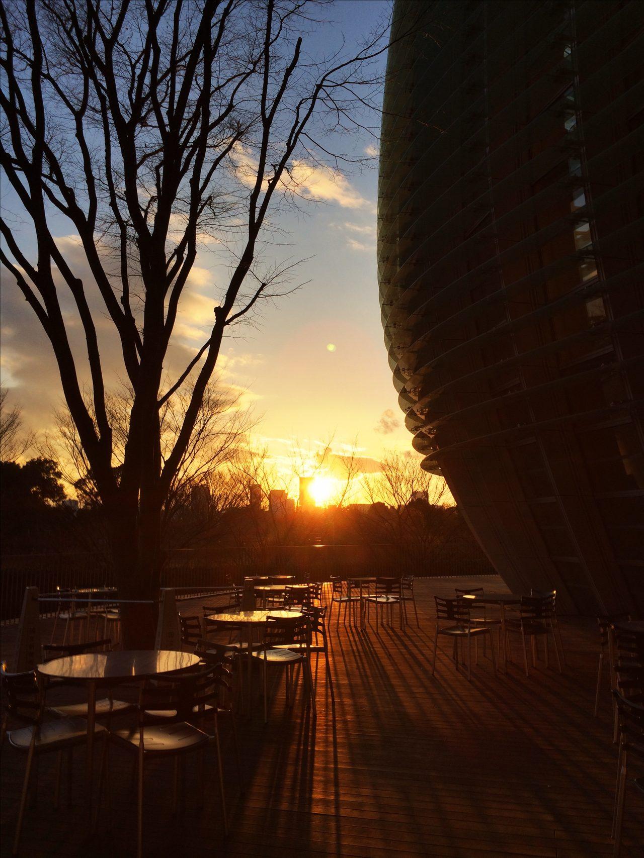 画像: 国立新美術館にて夕陽を愛でる