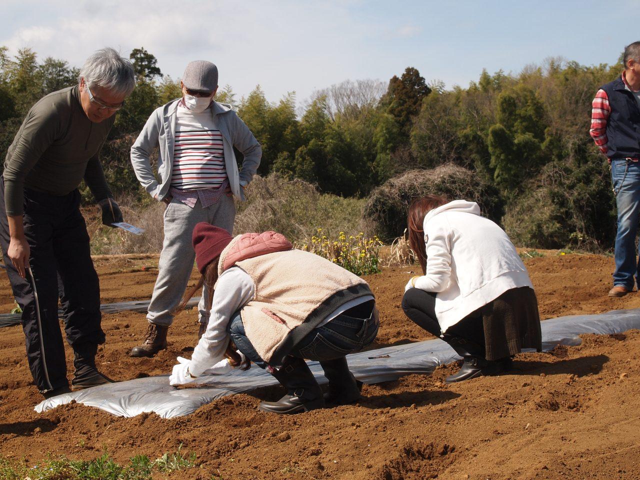 画像2: 5th Anniversary Farming Eventメキシコ流トウモロコシ育成法!?