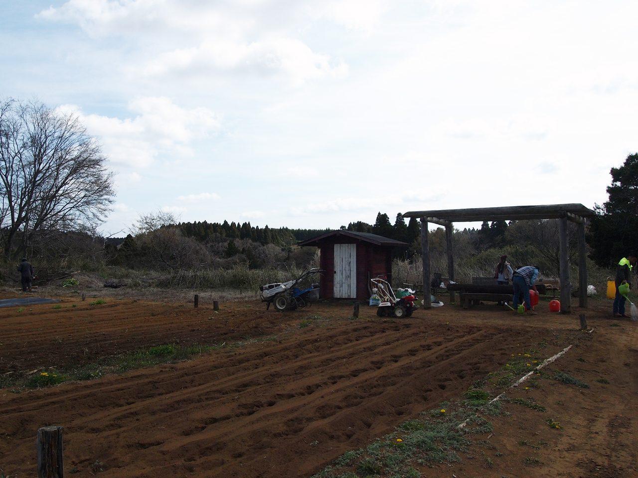 画像1: 5th Anniversary Farming Eventメキシコ流トウモロコシ育成法!?