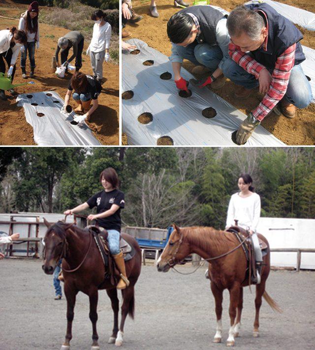 画像: 写真上:カボチャの種を植える参加者。自然に作業を分担し、協力しながらすすめる。写真下:5周年を記念した乗馬体験