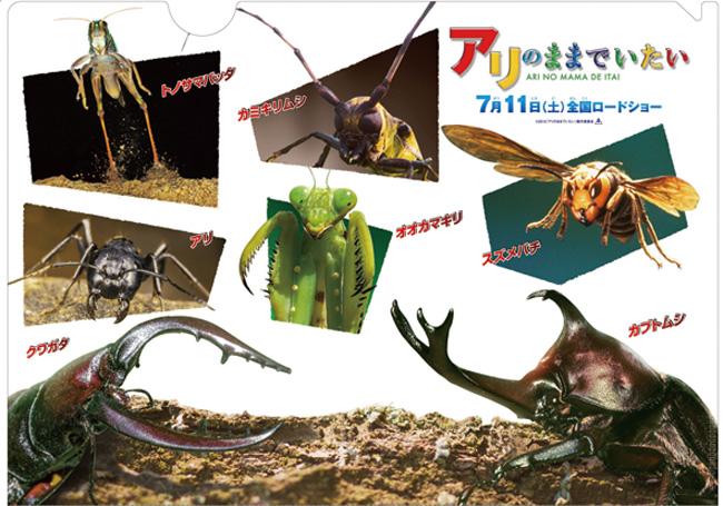 画像: ありのままの昆虫の生態が明らかに!