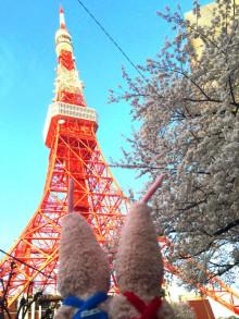 画像: ノッポン オフィシャルブログ「~双子のセレナーデ~」Powered by Ameba