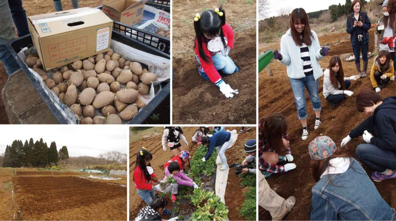 画像: 今年1回目の畑仕事 じゃがいもを植えて畑を耕す