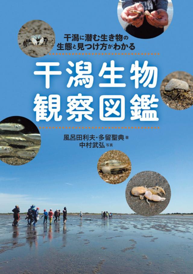 画像3: 今年の海を楽しくする、5つのカルチャーヒント make your marine life shine!