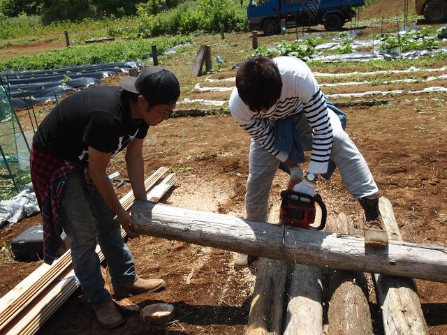 画像2: 収穫が待ちきれない! 秋の味覚サツマイモを植える Farming EVENT Report