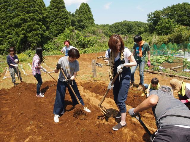 画像1: 収穫が待ちきれない! 秋の味覚サツマイモを植える Farming EVENT Report
