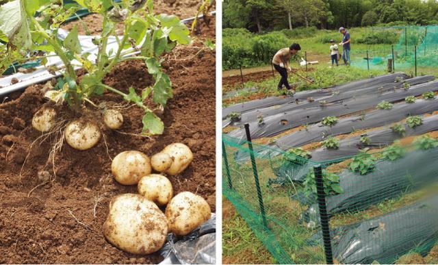 画像2: Farming Garden in リソル生命の森リゾート イベントリポート