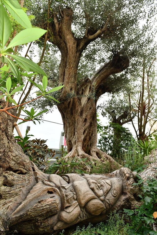 画像: 木に彫られた「ゑびす天さま」。見つけたらラッキーな事が起きる!?。
