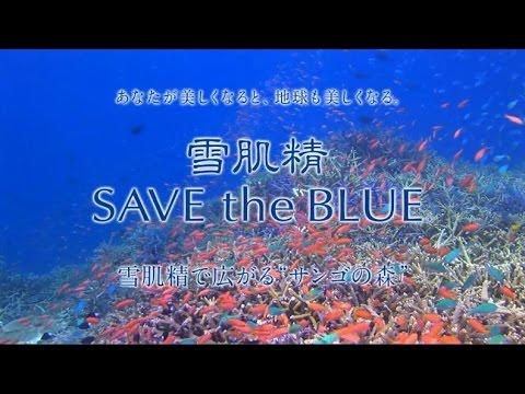 画像: 雪肌精 SAVE the BLUE 2016 www.youtube.com