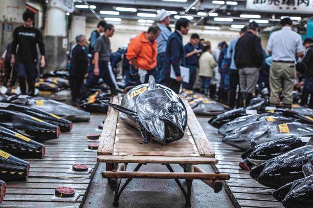 画像: 監督:遠藤尚太郎/1時間50分/松竹メディア事業部配給/公開中 http://tsukiji-wonderland.jp/ ©2016松竹
