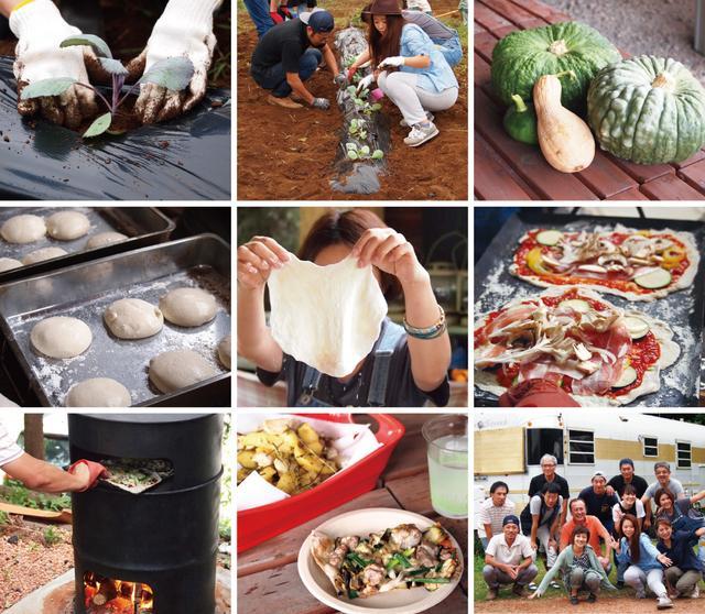 画像1: イノシシ対策は残念な結果に終わるも、最後の夏野菜でピザ作り!