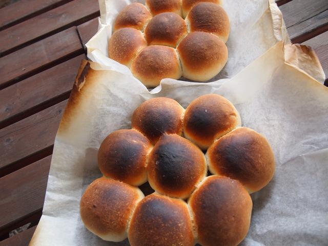 画像3: 冬が近づく農園で焼きたてパン祭り!