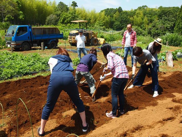 画像1: 収穫が待ちきれない! 秋の味覚サツマイモを植える Farming Event Report【2016.5.29】