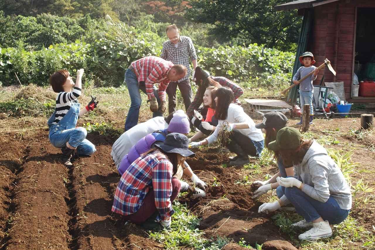画像1: 食欲全開!秋の味覚に舌鼓 Farming Event Report【2015.10.18】