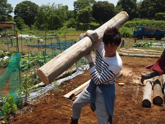 画像2: 収穫が待ちきれない! 秋の味覚サツマイモを植える Farming Event Report【2016.5.29】