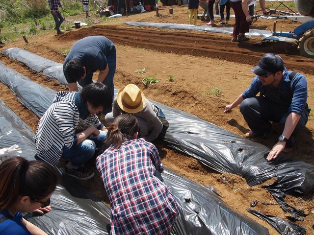 画像2: たけのこ掘れたぞ! おいしいぞ! Farming Event Report【2015.4.26】
