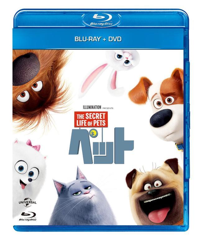画像: 販売元:NBCユニバーサル・エンターテイメント発売中 ブルーレイ+DVDセット3990円(税別)
