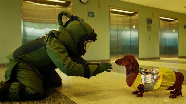 画像: THL編集部オススメMOVIE『トッド・ソロンズの子犬物語』