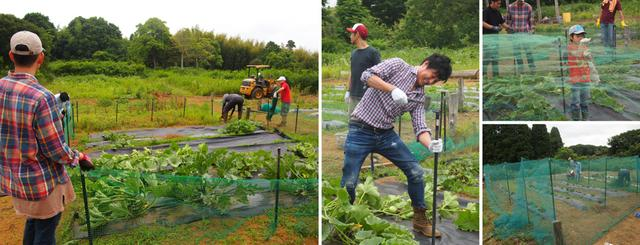 画像3: 年に一度、この時期だけのお楽しみ! 幻想的な蛍の夕べ&バーベキュー Farming Event Report【2017.6.17-18】