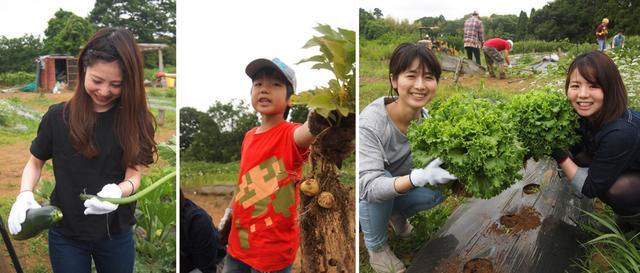画像2: 年に一度、この時期だけのお楽しみ! 幻想的な蛍の夕べ&バーベキュー Farming Event Report【2017.6.17-18】