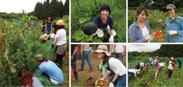 """画像2: 本格的に夏野菜の収穫スタートそして恒例の""""流しそうめん"""" Farming Event Report【2017.7.30】"""