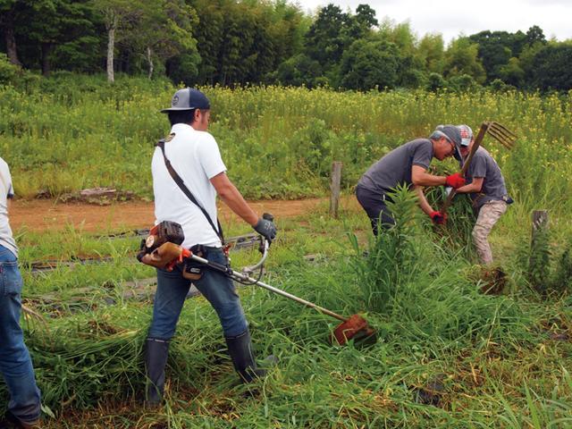 """画像1: 本格的に夏野菜の収穫スタートそして恒例の""""流しそうめん"""" Farming Event Report【2017.7.30】"""
