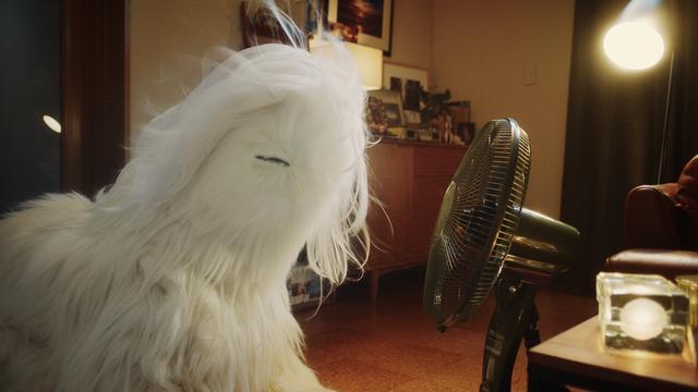"""画像3: 滝沢秀明に忍び寄る、気になる存在 白髪の化身""""シラガー"""""""