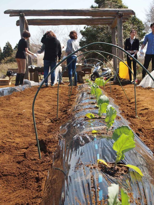 画像3: Farming Garden in リソル生命の森 イベントリポート
